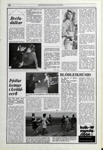 Desmond Bagley Icelandic media article from Morgunbladid 11th May 1975.