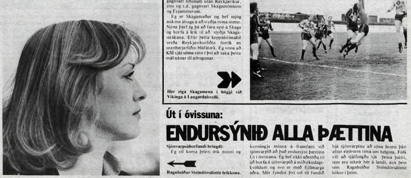 Desmond Bagley Running Blind Icelandic media article from Dagbladid 26th January 1980.