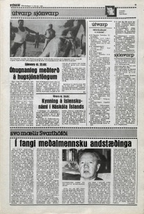 Desmond Bagley Running Blind Icelandic media article from Visir 2nd February 1980.